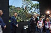 Tropami Świętokrzyskich Dinozaurów